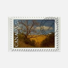 Spruce Woods Stamp Rectangle Magnet
