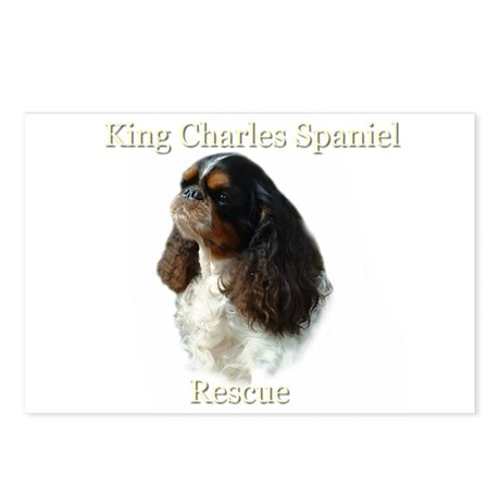 King Charles rescue Postcards (Package of 8)
