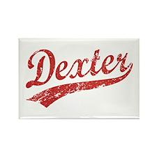 Team Dexter Rectangle Magnet