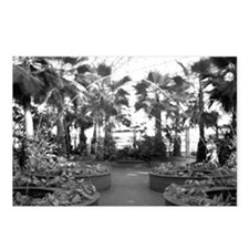 The Crystal Garden Postcards (Package of 8)