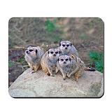 Meerkat Classic Mousepad