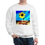 God Bless Illinois! Sweatshirt