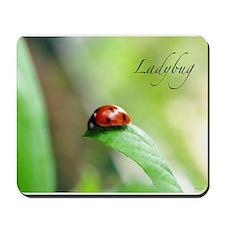 Ladybug on leaf Mousepad