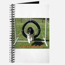 Brady's Training Journal