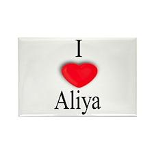 Aliya Rectangle Magnet