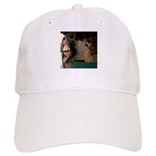 Humorous Equine Baseball Cap