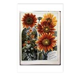 Henderson's Sunflower Postcards (Package of 8)