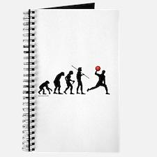 Dodgeball Evolution Journal