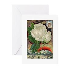 Climbing Rose Greeting Cards (Pk of 10)