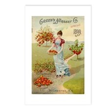 Green Nursery 1899 Postcards (Package of 8)