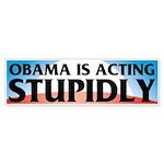 Stupidly Bumper Sticker (50 pk)