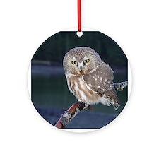 Saw-whet Owl Ornament (Round)