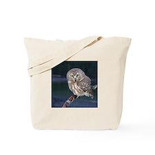 Saw-whet Owl Tote Bag