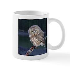 Saw-whet Owl Mug