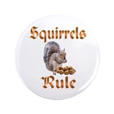 "Squirrels Rule 3.5"" Button"