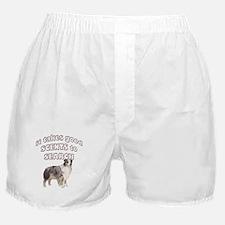 Aussie Search dog Boxer Shorts