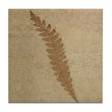 Fern Leaf Fossil Art Tile Coaster Leaves