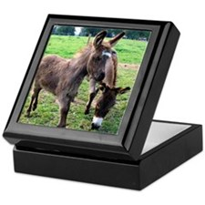 Baby Mini Donkey & Mom Keepsake Box