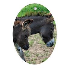 Miniature Donkeys Oval Ornament