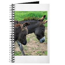 Miniature Donkeys Journal