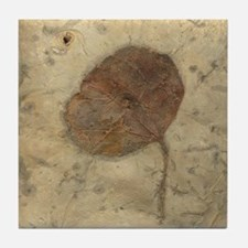 Leaf Fossil Art Tile Coaster
