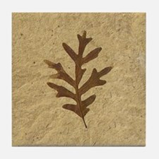 Feather Lobe Oak Leaf Fossil Art Tile Coaster