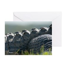 What a Croc! - Greeting Cards (Pk of 10)