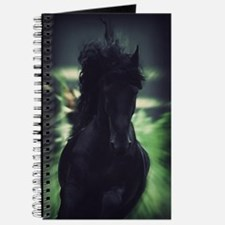 Friesian Stallion Journal