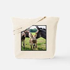 Miniature Donkey Family Tote Bag
