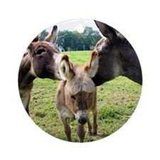 Miniature Donkey Family Ornament (Round)