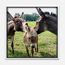 Miniature Donkey Family Tile Coaster