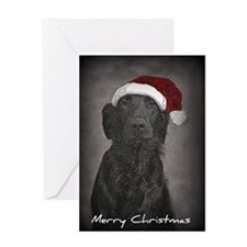Flatcoat Christmas greeting card
