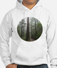 Redwood Forest Hoodie