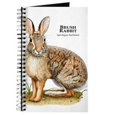 Brush Rabbit Journal