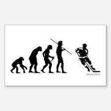 Hockey Evolution Rectangle Sticker 10 pk)