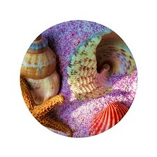 "Starfish and Shells 3.5"" Button"