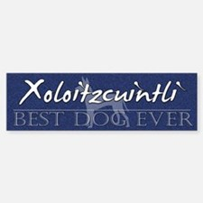 Best Dog Ever Xoloitzcuintli Bumper Bumper Bumper Sticker