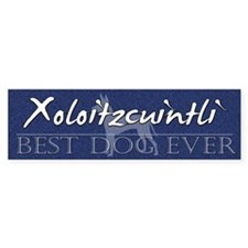 Best Dog Ever Xoloitzcuintli Bumper Bumper Sticker