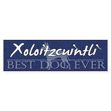 Best Dog Ever Xoloitzcuintli Bumper Bumper Sticker