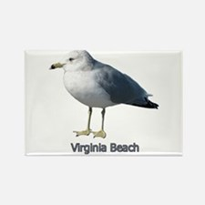 Virginia Beach Gull Rectangle Magnet