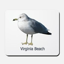 Virginia Beach Gull Mousepad
