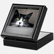 Daydreaming Schubert Keepsake Box