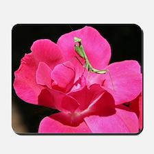 Rosy Mantis Mousepad