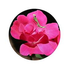 """Rosy Mantis 3.5"""" Button"""