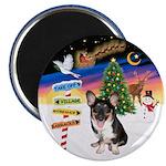 XmasSigns/Corgi Pup (Z) Magnet