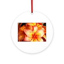 Orange Cream Ornament (Round)
