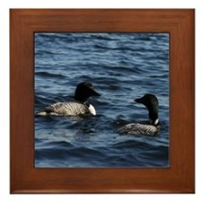Two Loons Framed Tile