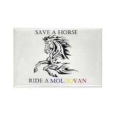 Save a horse Ride a Moldovan Rectangle Magnet