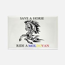 Save a horse Ride a Moldovan Rectangle Magnet