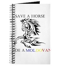 Save a horse Ride a Moldovan Journal